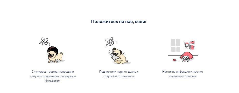 Как застраховать квартиру или домашних животных в Манго Страхование